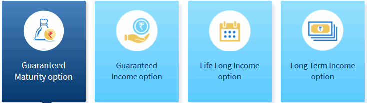 4 variant option of HDFC Life Sanchay Plus Policy