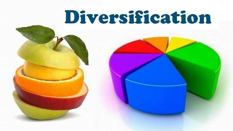 Diversified portfolio