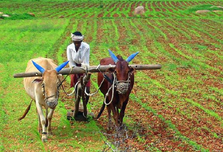 agricultural income is exempted from tax