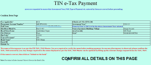 confirm details before paying income tax online