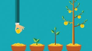 Points to know before investing in equity mutual funds